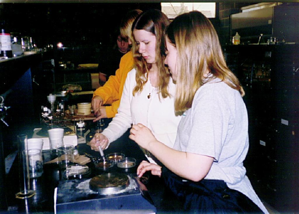 Students conducting a bioassay