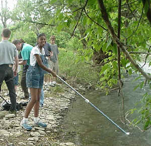 Newark Valley student sampling river